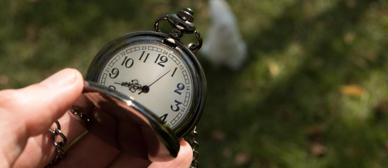 Reloj en mano y conejo blanco al fondo