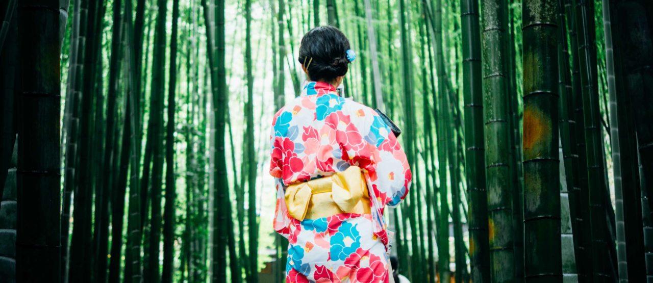 Geisha Japan - Alice in beautyland