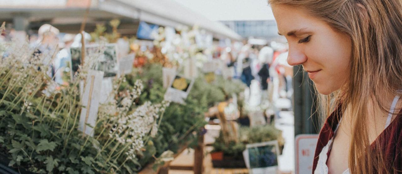 Alimentacion Biologica - Alice in Beautyland - Shopping plants