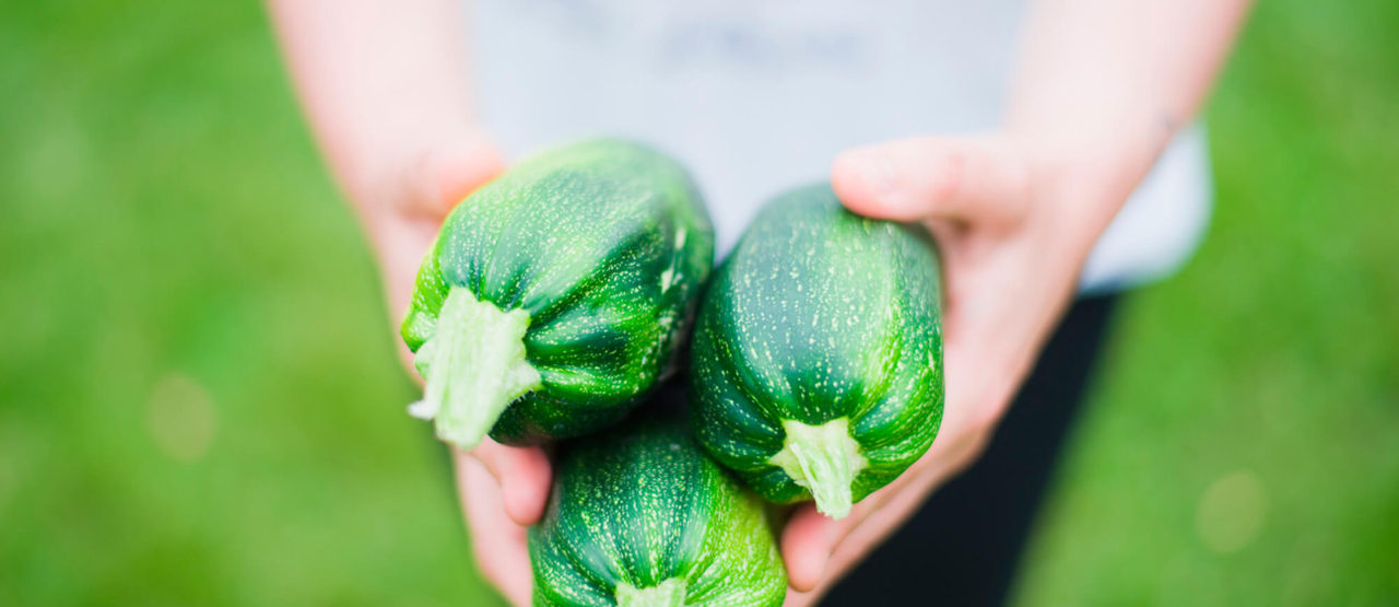 Alimentacion Biologica - Alice in Beautyland - Zucchini