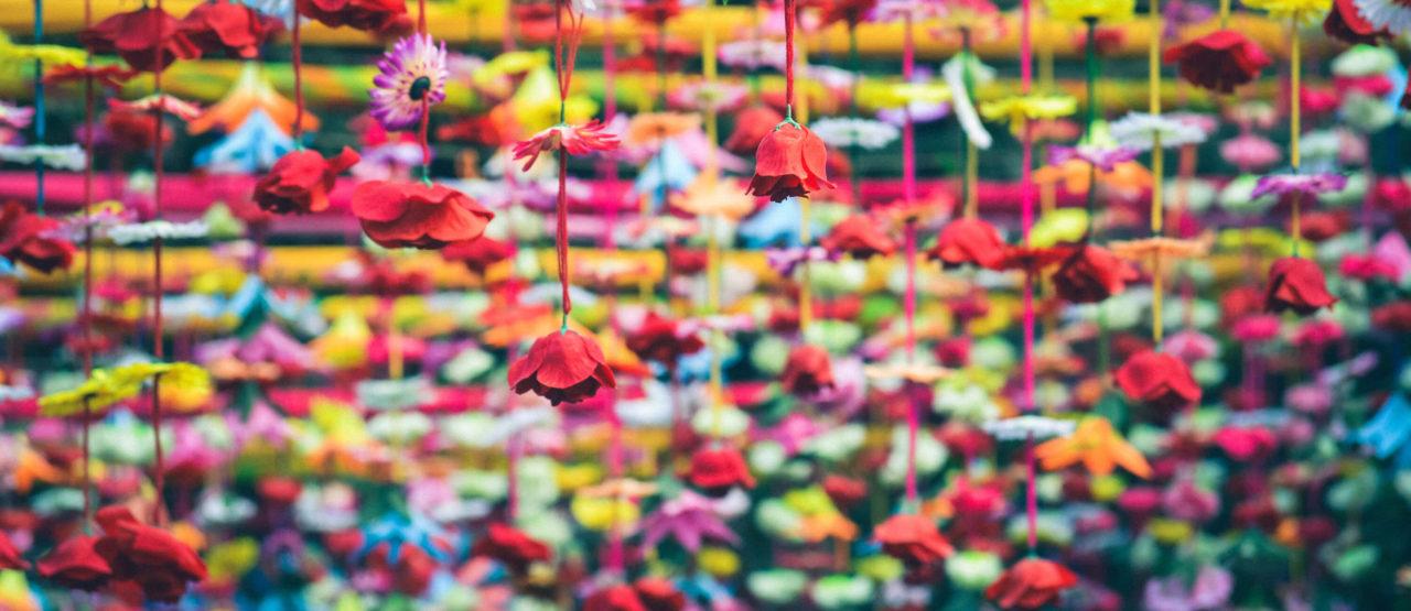 Ayurveda Secretos de la India Alice in Beautyland Blog-Colourful Flowers
