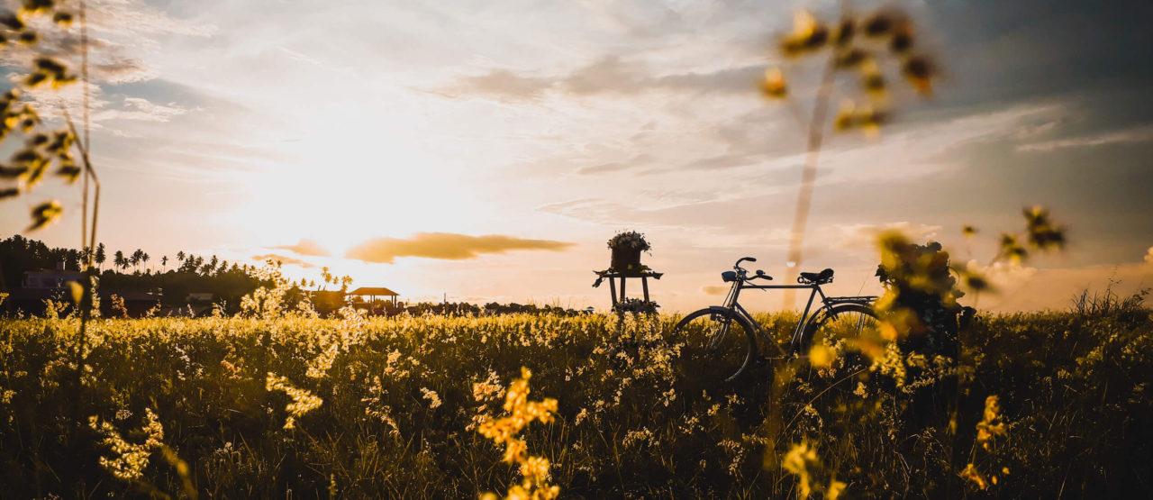 Escapadas de Invierno Para el Fin de Semana-Alice in Beautyland Blog-Paseo bici