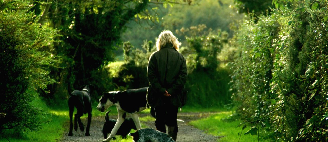 Caminar es un placer y es hacer ejercicio-Alice in Beautyland Blog-mujer paseando con perros