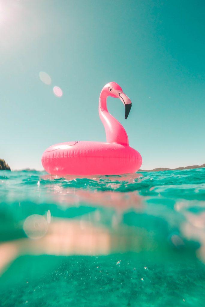 Como tomar el sol sin quemarse-Alice in Beautyland-flamingo