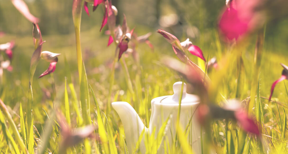 Beautyland tiny teapot on the grass with flowers