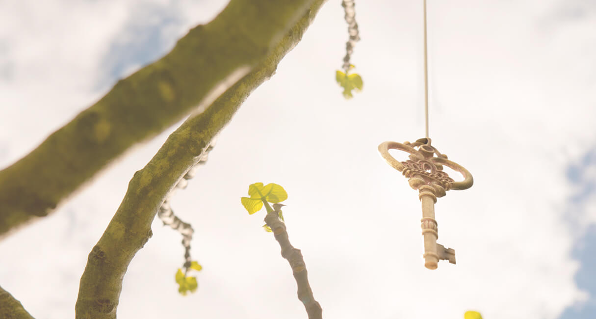 Tree branches with a golden key